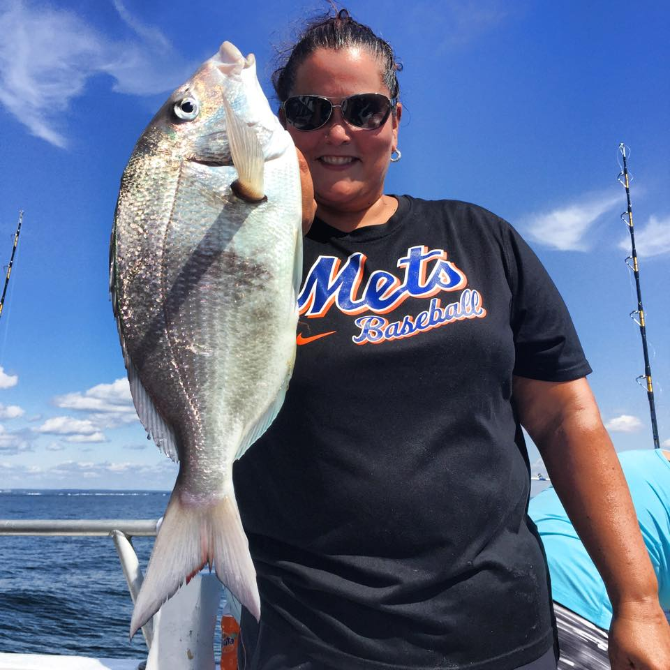 Full day humpback porgies and fluke combo sailing from for Celtic quest fishing