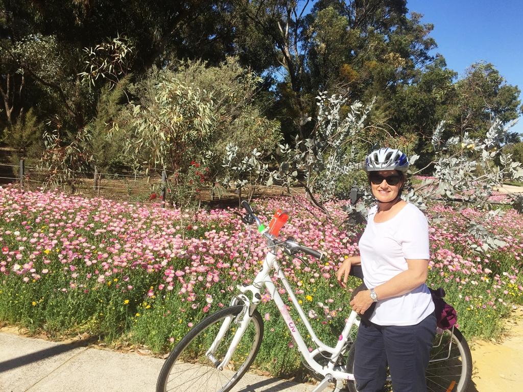 Wildflower Festival Bike Tour Kings Park