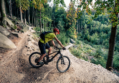 electric-Mtn Bike Experience, National Park Single-Track