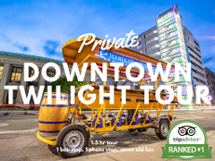 Discounted Twilight Tour (pay per seat, min 8)