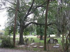 Colonial Park - Savannah on Foot