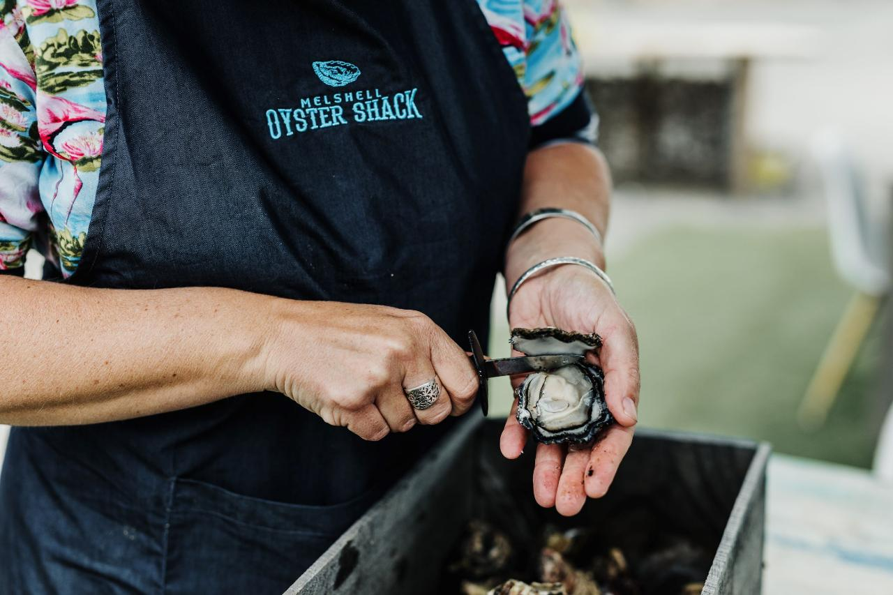 Behind The Scenes Oyster Farm Tour