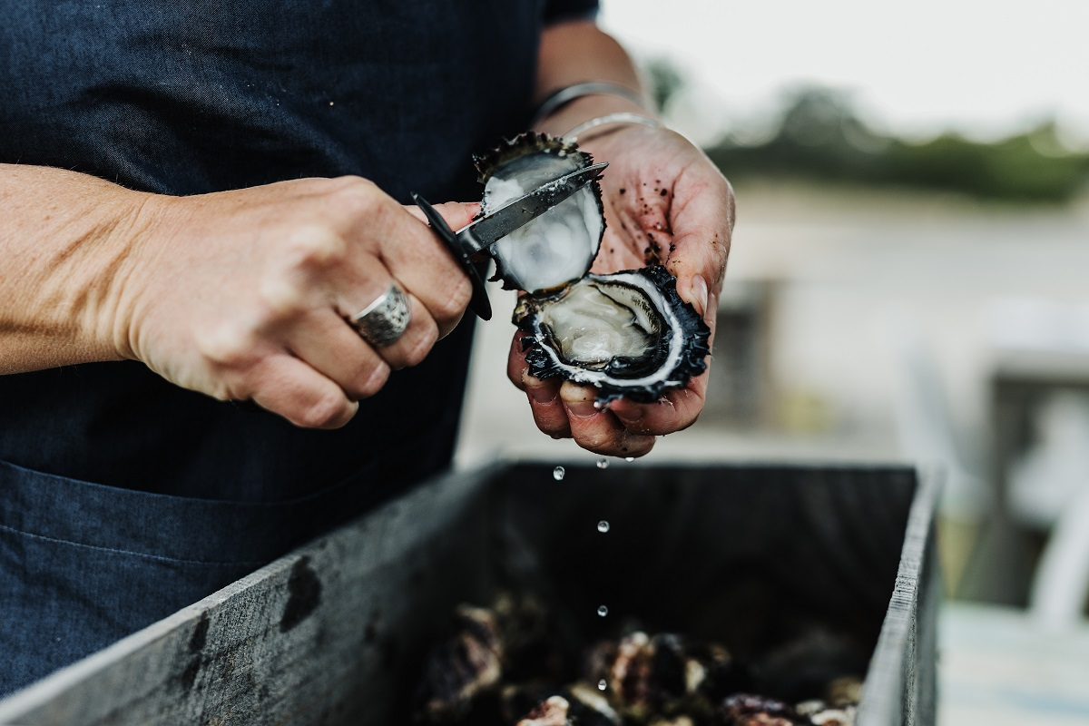 Private Shucking Lesson and Chat