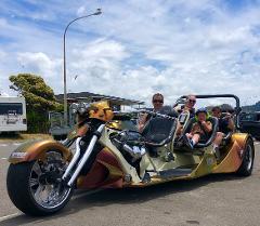 LAKE TAUPO: 25-Minute Ride - max 4 passengers
