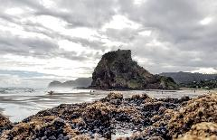 Piha to Auckland (10:30 am Shuttle)