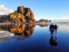 Auckland to Piha (11:30 am Shuttle)