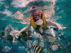 Snorkeling in Padang Bai