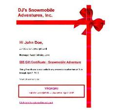 $95 Gift Voucher  -  DJ's Snowmobile Adventure