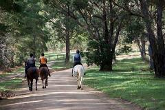 Horse Riding Permit - Day