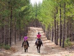 Horse Riding Permit - Annual
