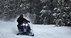 Single Rider Snowmobile: 24 Hour Rental