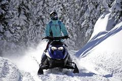 Grand Touring Snowmobile: 6 Hour Rental  (2 seater)