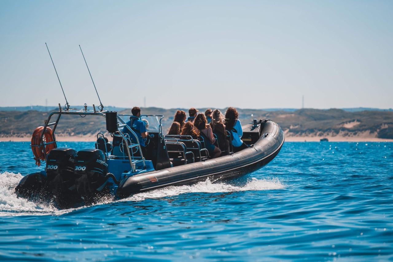 HIGH-SPEED SEA SAFARI