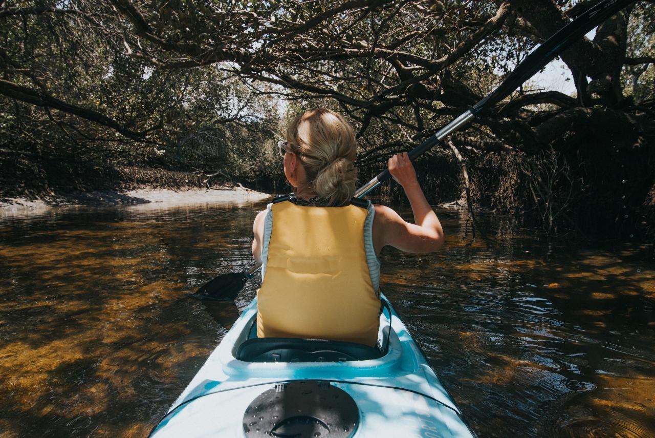 Dolphin Sanctuary Guided Eco Kayak Tour