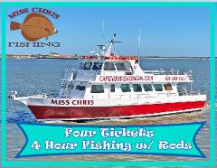 4 Hour Fishing Trip for Four with Rods