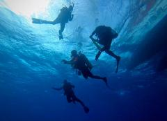 Open Water Diver Course - @ Big Pine Key