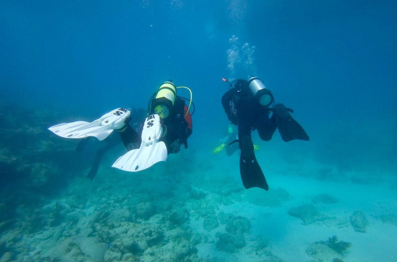 Discover Scuba Experience - Dive In a Day! @ Dive Key West