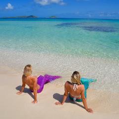 SSI Ocean Mermaid Course