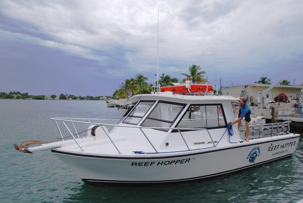 Reef Hopper  31' Dive/Snorkel Boat - Full Day Private Charter