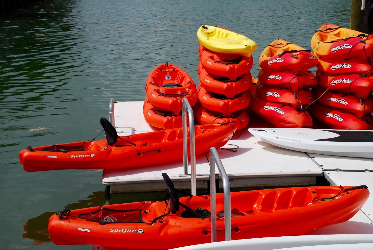 Kayak Rentals @ Tarpon Creek Marina