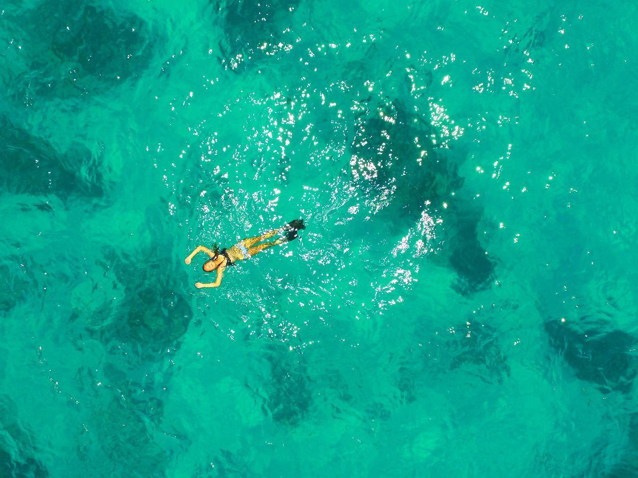 Looe Key Snorkel Trip