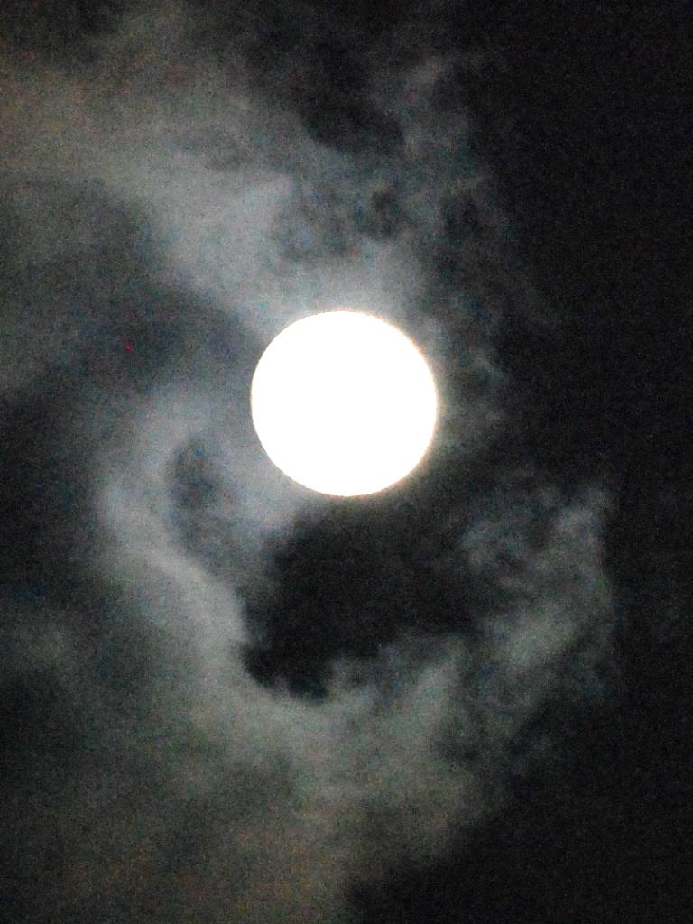 Full Moon Yoga Tour @ Crane Point