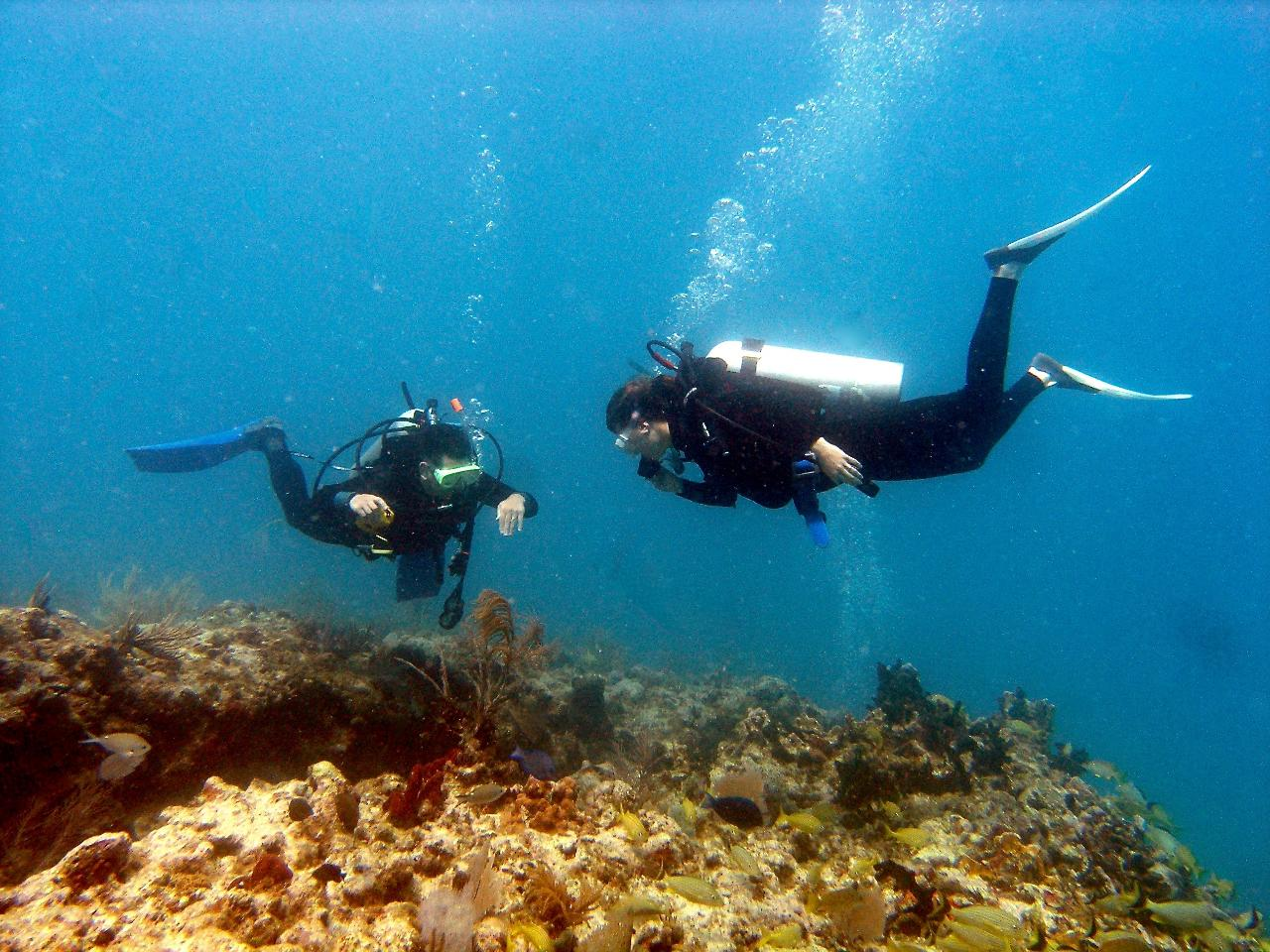 Advanced Open Water Diver Course - @ Marathon