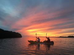 Sunset Kayak/SUP Harbor Tour @ Castaways