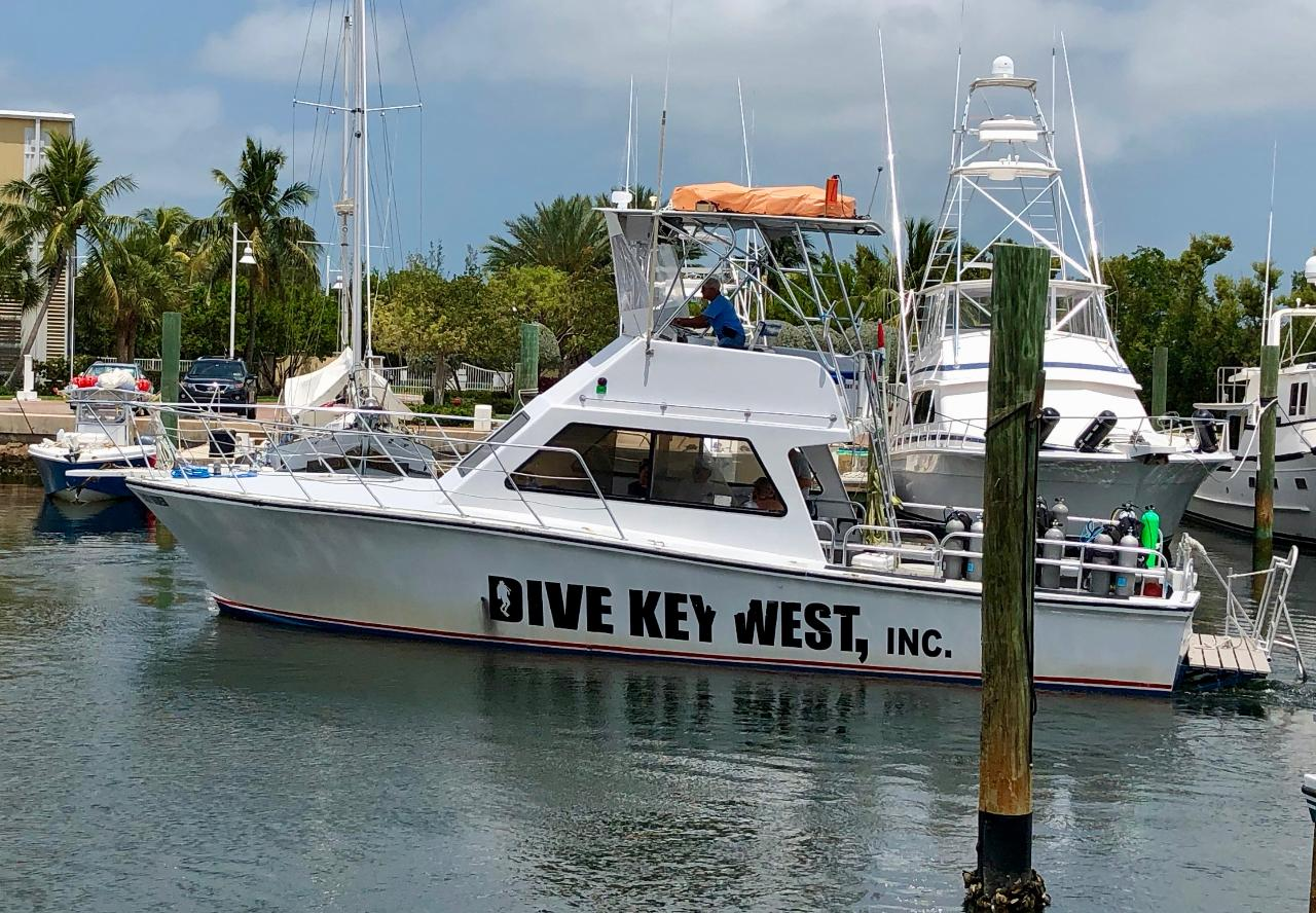 Dive Key West Private Boat Charter - Half Day