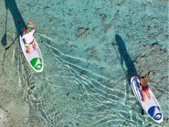 Paddle board Rentals @ Tarpon Creek Marina