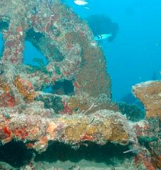 Key West Cayman Salvager Wreck Dive Trip