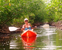 EasyKeys Kayak/SUP Tour @ Tarpon Creek