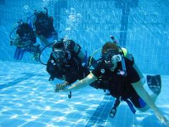 Discover Scuba Experience - Dive In a Day! @ Big Pine Key