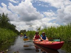 5 Hour Cathead Creek Kayak Tour
