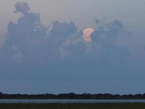 2 Hour Brunswick Full Moon Kayak Tour