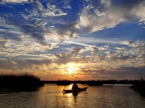 3 Hour St. Simons Kayak Tour (outgoing tide)