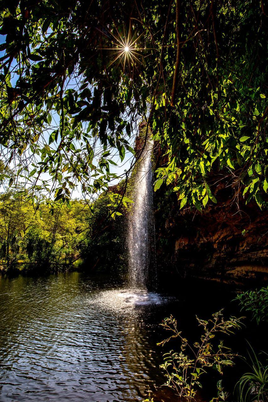 Waterfall Wanderer