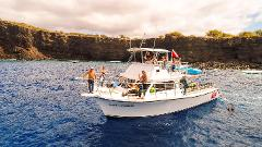 2 Tank Boat Dive and/or Snorkeling Trip (Mon-Wed-Fri)