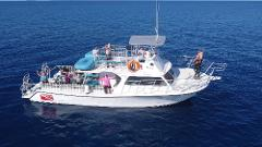 2 Tank Boat Dive and/or Snorkeling Trip