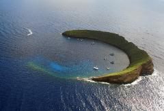 Molokini Backwall and Second Site