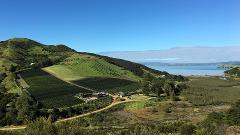 Waiheke Island Vineyards & Bush Walk Gift Card