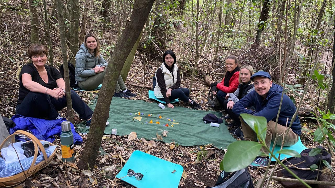 Wellbeing Workshop plus Forest Therapy Walk