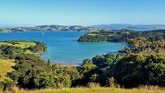 Waiheke Private Guided Backyard Break