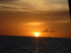 Exclusivity Evening Cruise - Wahoo (Resident Rates 2021/22)