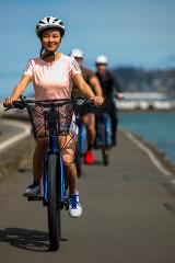 Electric Bike hire (short duration hires 1 day or less)
