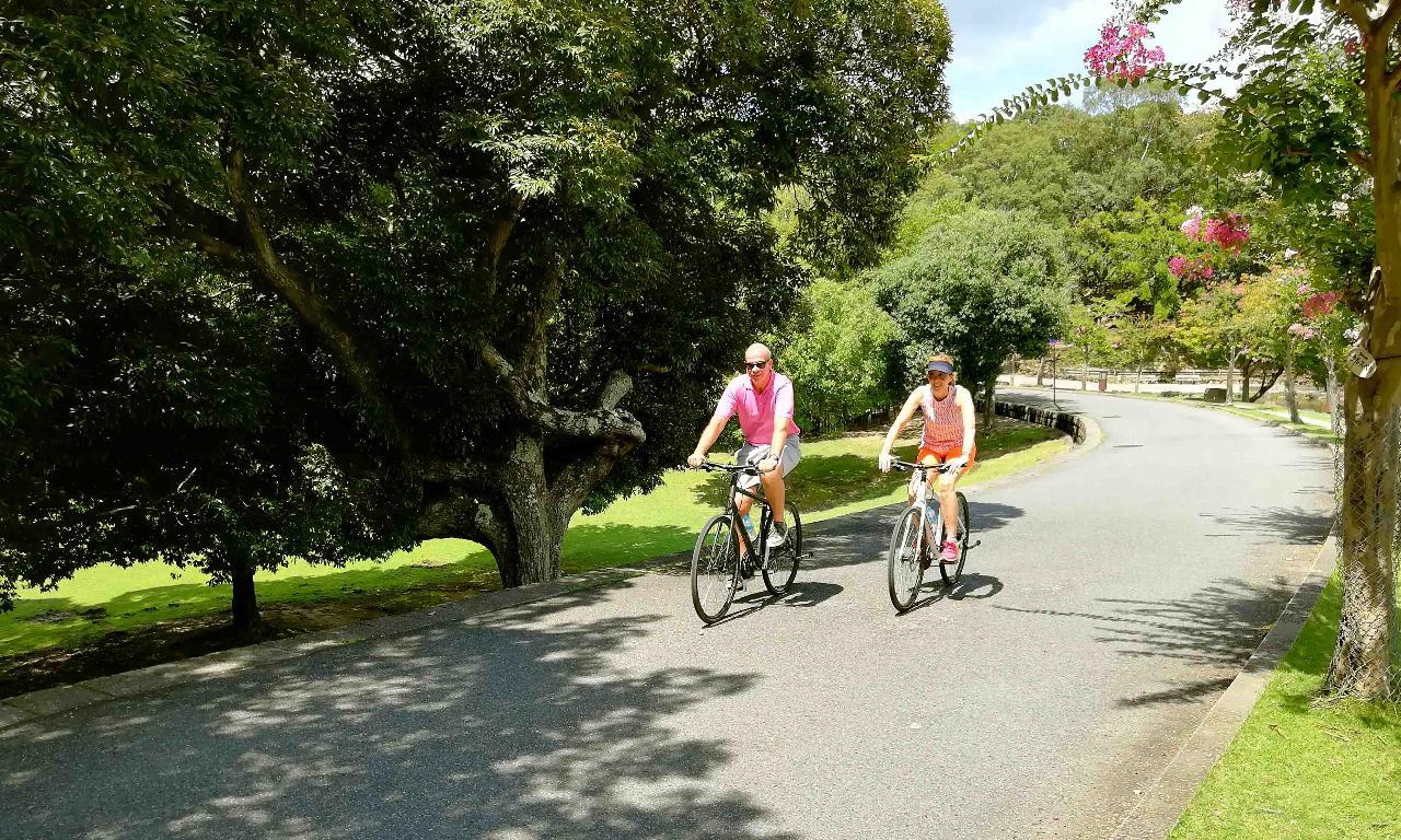 Nara - Highlights Bike Tour