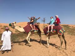 15 Mnts Camel Trekking Tour