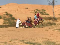 One Hour Camel Trekking Tour