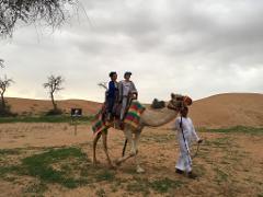 30 Mnts Camel Trekking Tour