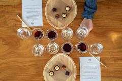Wine & Food Pairing - a Sensory Journey